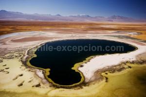 Laguna Cejar, Salar de Atacama, Chili