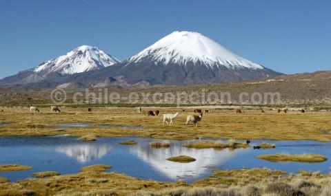 [Article invité] Le Chili et son incroyable géographie : de l'Atacama à l'Antarctique