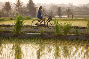 Film voyage : Mange, Prie, Aime