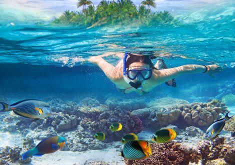 Journée détente sur l'ïle de Corail de Pattaya
