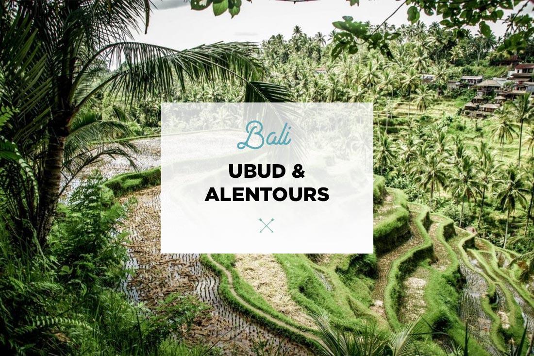 blog ubud quoi faire
