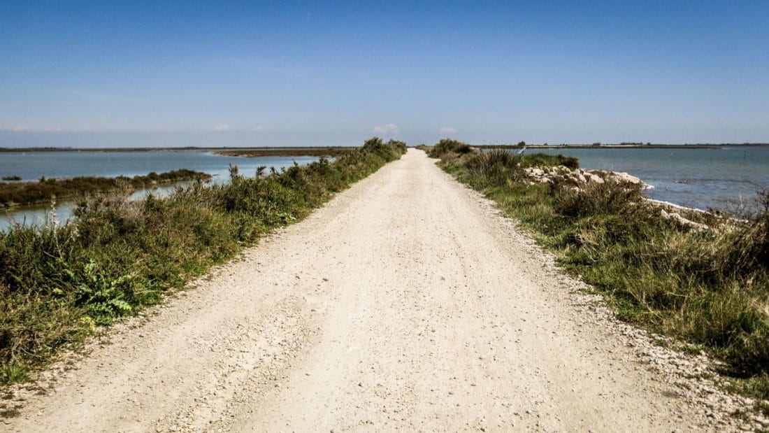 dc55bd2545b Visiter la Camargue  Balade en vélo  la Digue à la mer