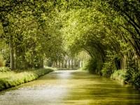 [Hérault] De Agde à Béziers sur le Canal du Midi en péniche sans permis