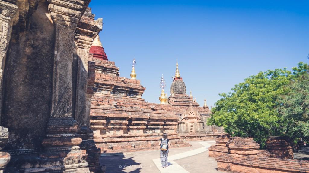 Visister Bagan