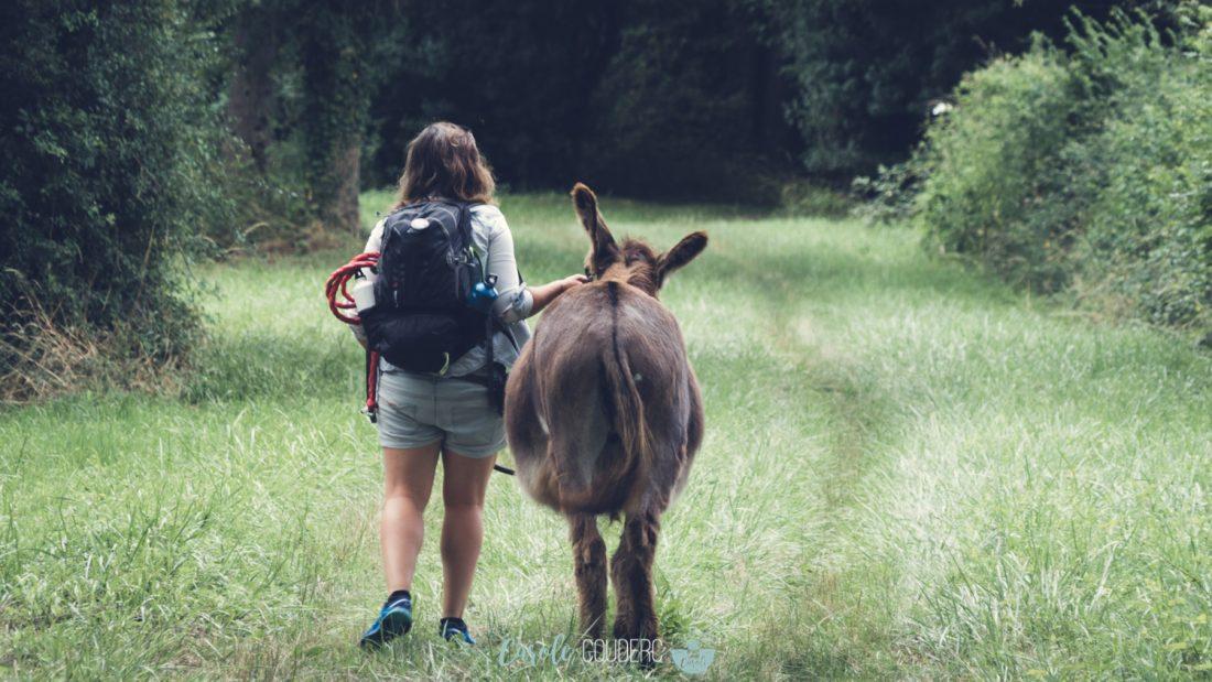 Berry randonnée avec un âne