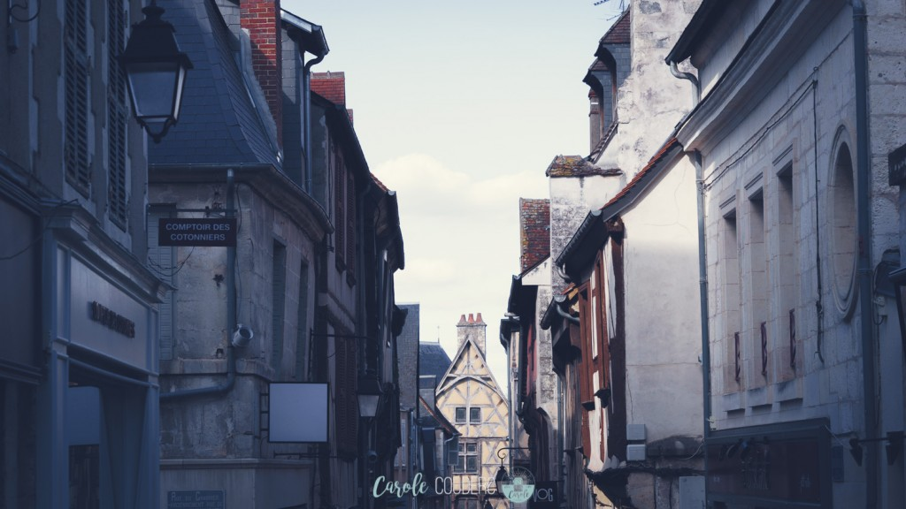 TYROLIENNE-BOURGES-91