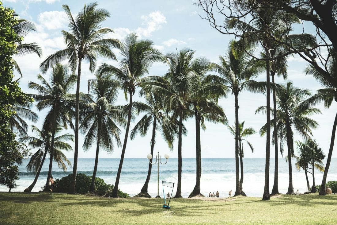 Que faire dans le Sud de la Réunion