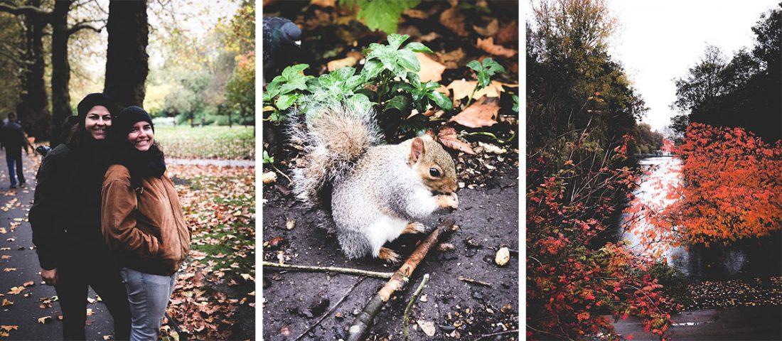 saint jame's park que visiter à Londres